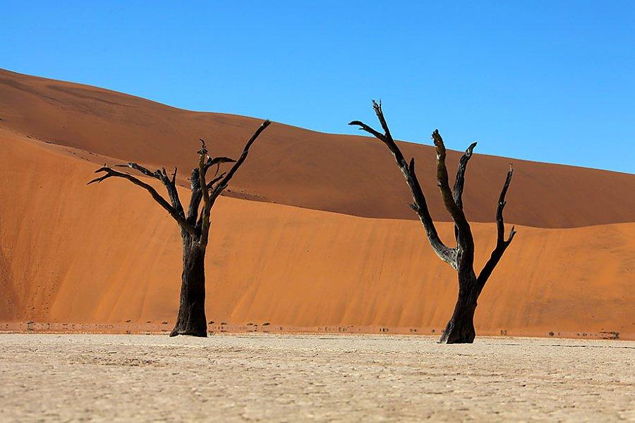 10 fototipps f r ihre namibia urlaubsfotos namibia reisen informationsportal. Black Bedroom Furniture Sets. Home Design Ideas