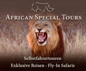 African Special Tours