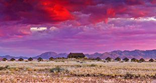 Desert Homestead Lodge ★★★